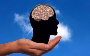 Intestino: il nostro secondo cervello