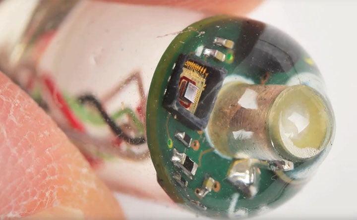 Un sensore ingeribile può monitorare i segni vitali dall'interno del nostro intestino