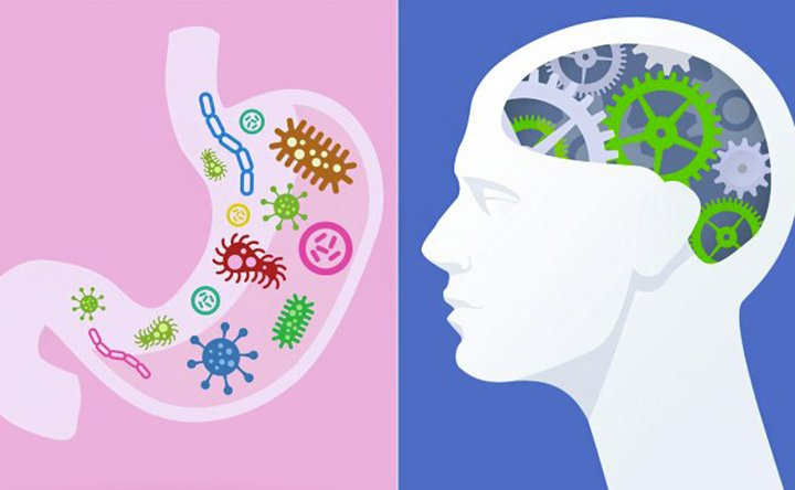 Lo squilibrio del microbiota e la sclerosi multipla: c'è un legame?