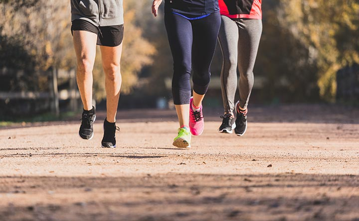 L'esercizio fisico da solo altera il nostro microbiota intestinale