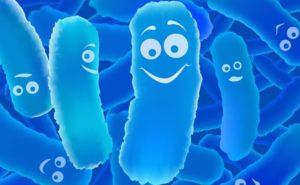 Psicobiotici: probiotici che influenzano la mente