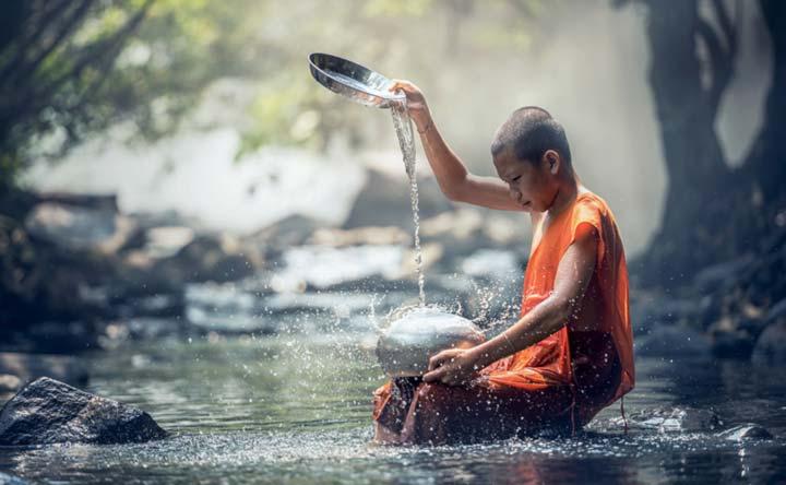Saggezza buddista e batteri: un punto di vista differente