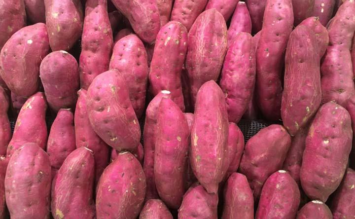 La patata americana per combattere la stipsi