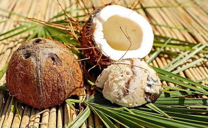 Acqua di cocco vs latte di cocco: come differiscono e quali sono i loro benefici
